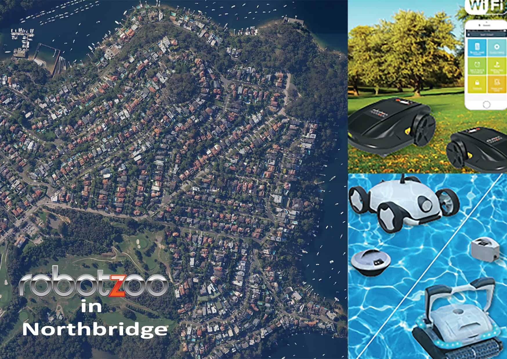 RobotZoo In Northbridge